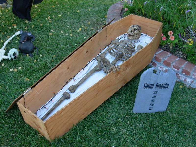 Paper Mache Skeletons