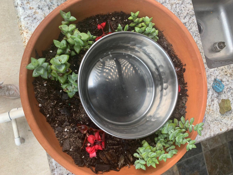 No Mess Dog Water Bowl