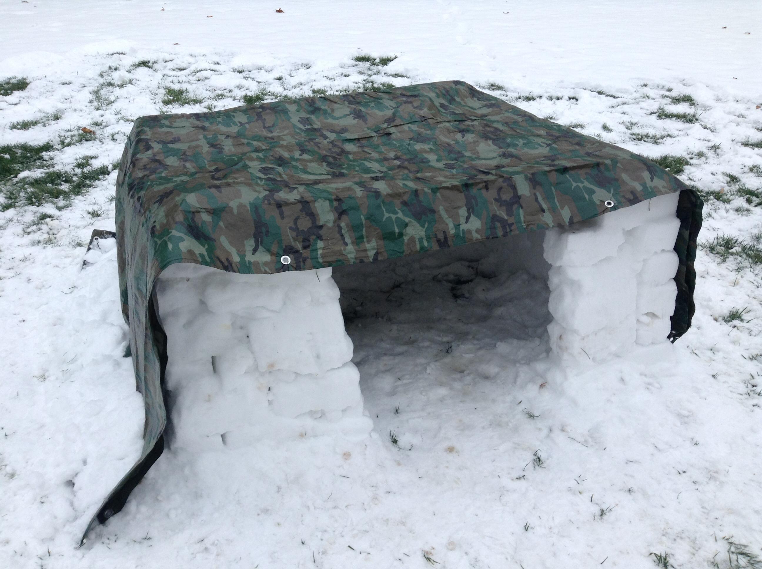 Winter Snow Fort