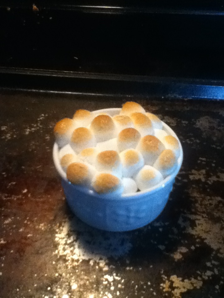 Easy S'mores Bowl