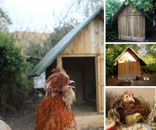 Organic Homestead - Smallholding