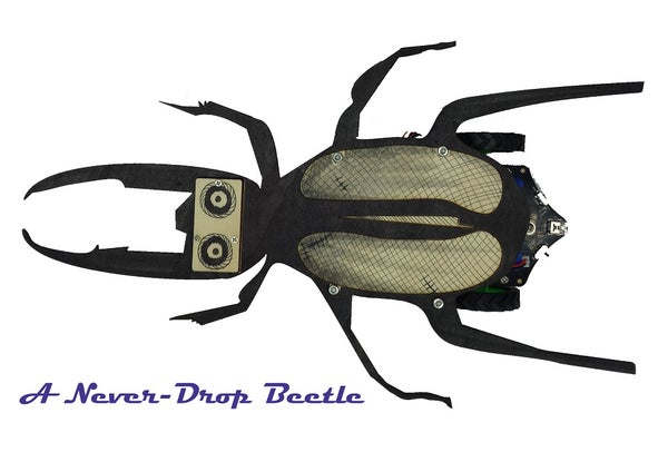 A Never Fall Beetle