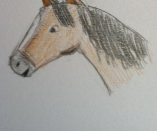 How to Draw a Horse's Face