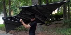 The Finished BatWing Kite