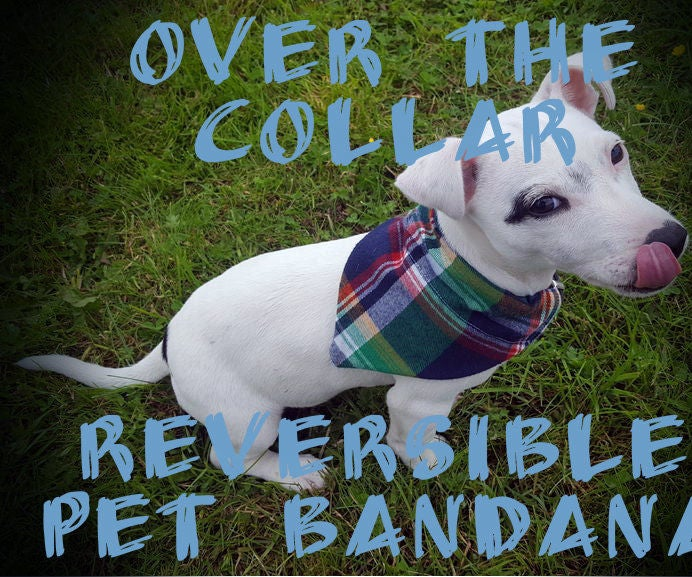 Home Run Double Sided Dog Bandana Over the Collar