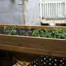 Build a plant box from an old Futon base