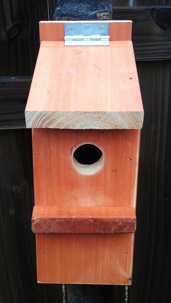 Bluebird House Plan