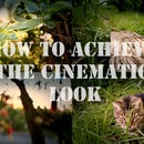 Achieve a Stunning Professional Film Cinematic (Cheaply and Easily)