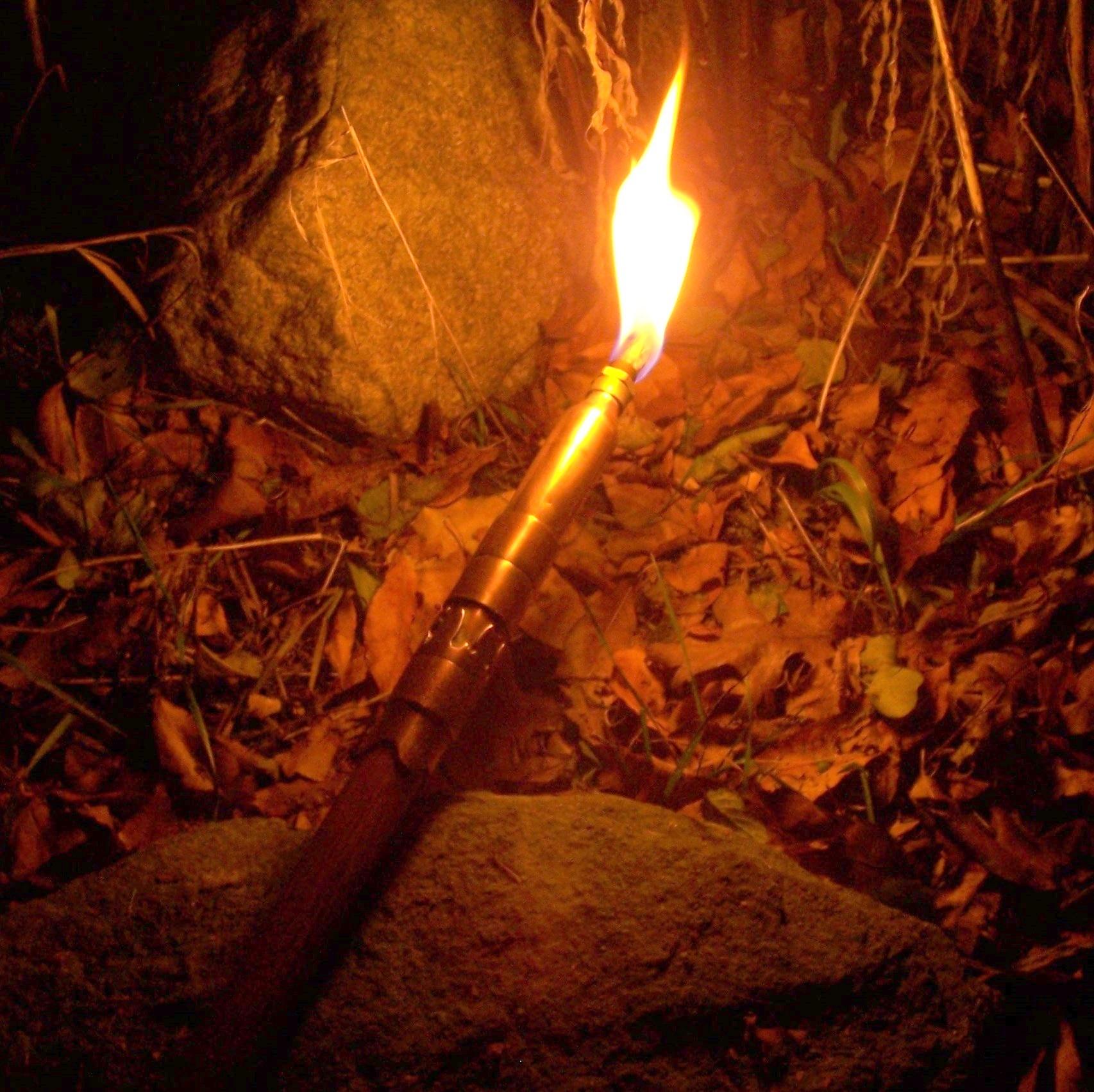 Multi-function Walking Stick III -  Torch Bearer