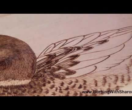 Pyrography: How to Woodburn a Mallard Duck Wing