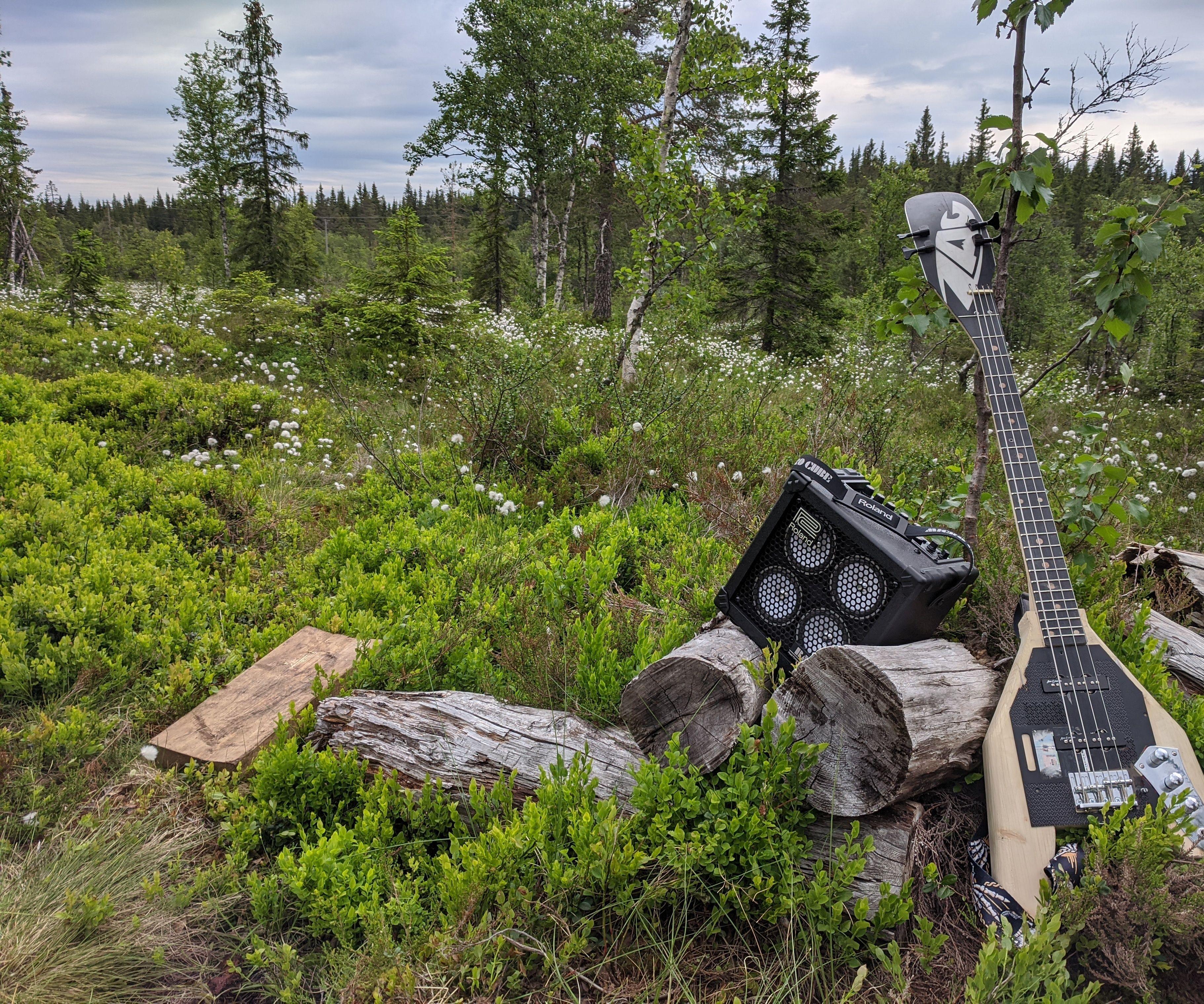 Bass Guitar Made of a Broken Ski.