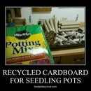 Toilet Paper Seedling Pots - Ultimate Recycle