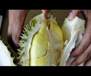How to Peel Durian Easy.