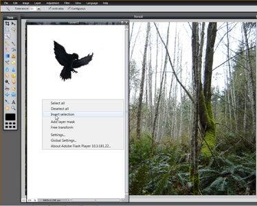 Adding the Crow