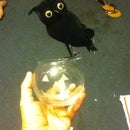 Glass O Lantern And Owl