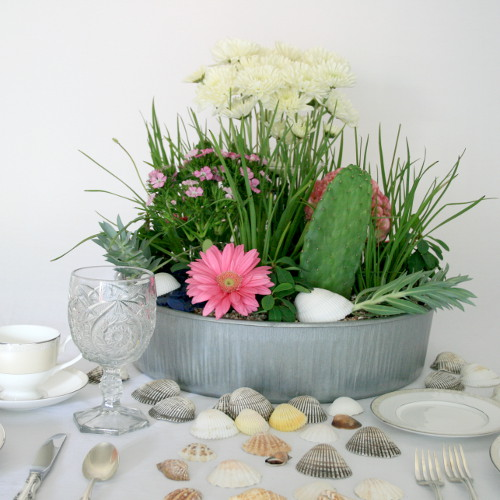 Coastal Floral Arrangement with Succulents