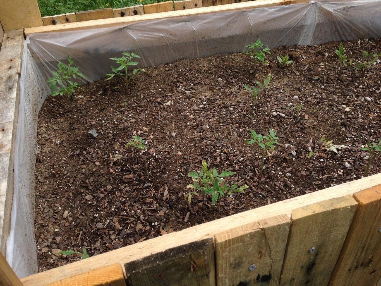 In Progress Raised Bed Pallet Garden