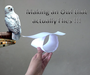 How to Make an Owl That Actually Flies.🦉.Make It Out of Paper