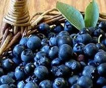 Homemade Bilberry Wine