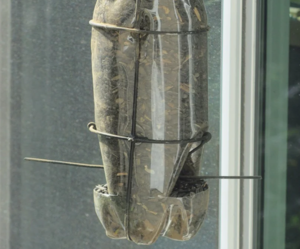 Bird Feeder From Wire & 2-Liter Bottle