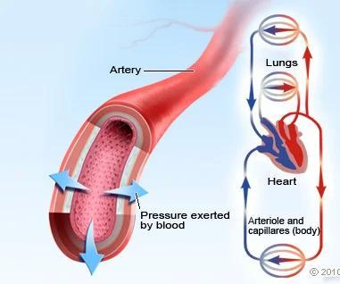 Python - Calculate Mean Arterial Pressure
