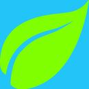 leaf26