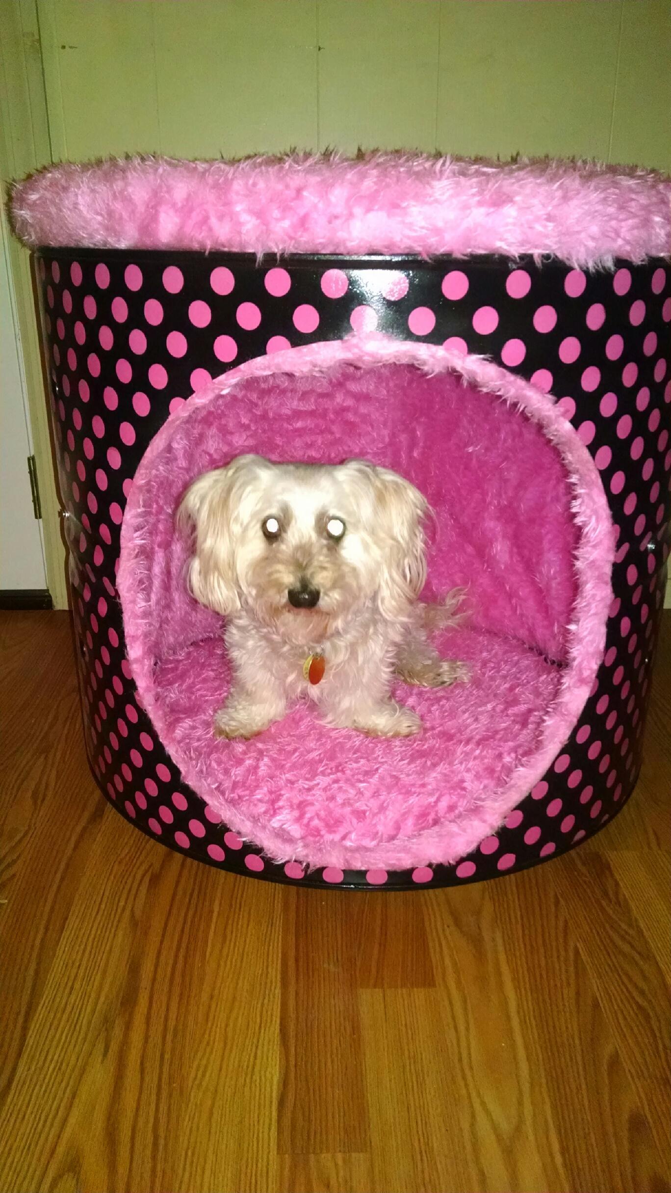 Dryer Drum Dog Bed