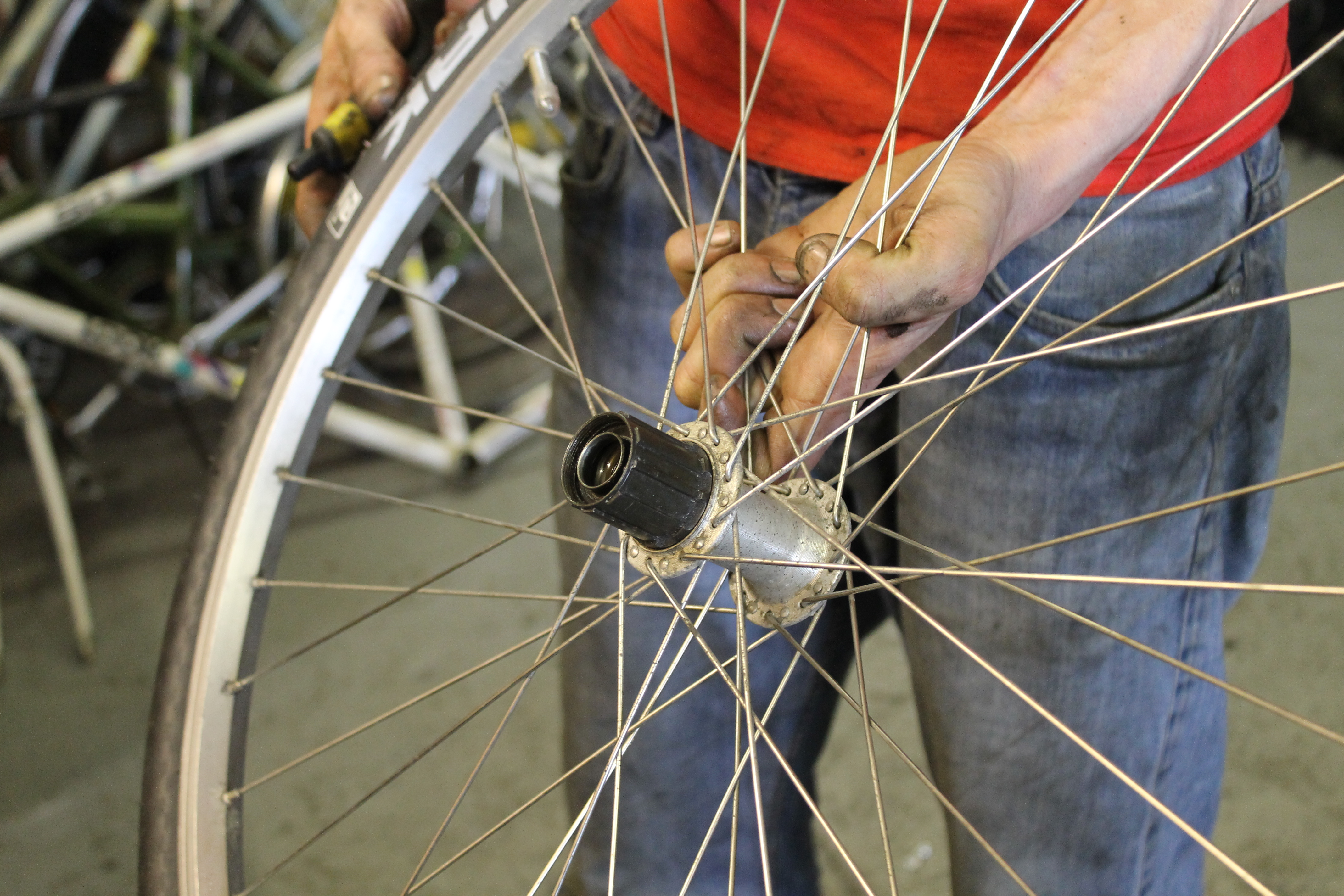 Replacing a Freehub Body on a Rear Bicycle Wheel.