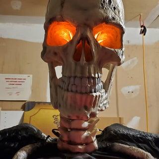 New 3D printed skull.jpg