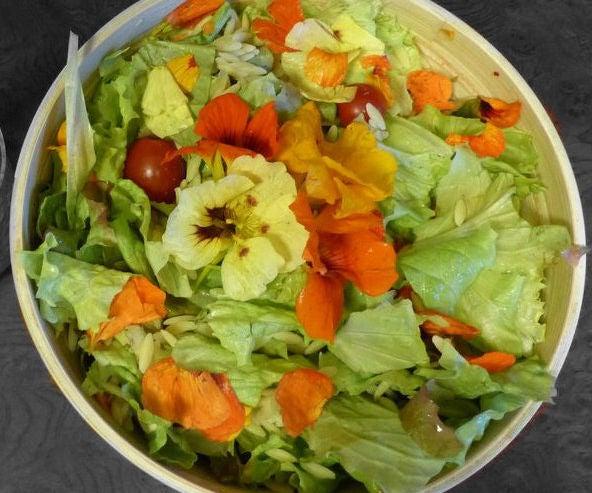Orzo and Nasturtium Salad