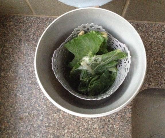 Salad Dryer
