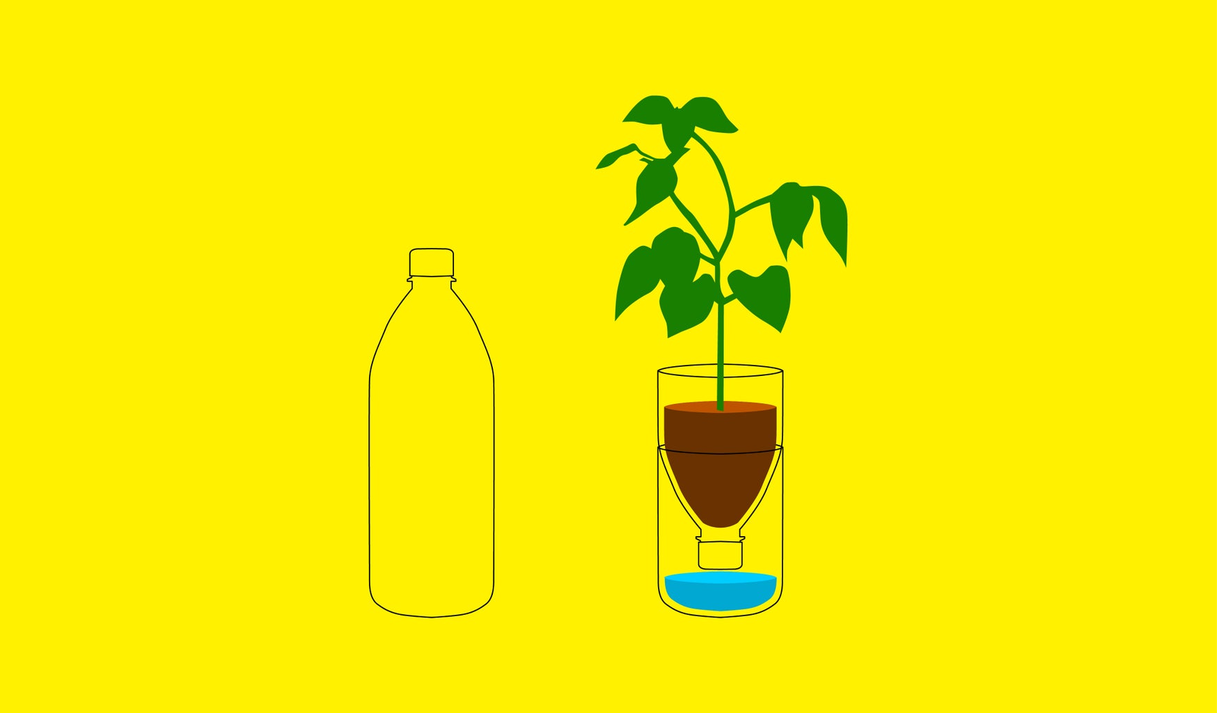 Up-Cycle Plastic Bottle to Planter
