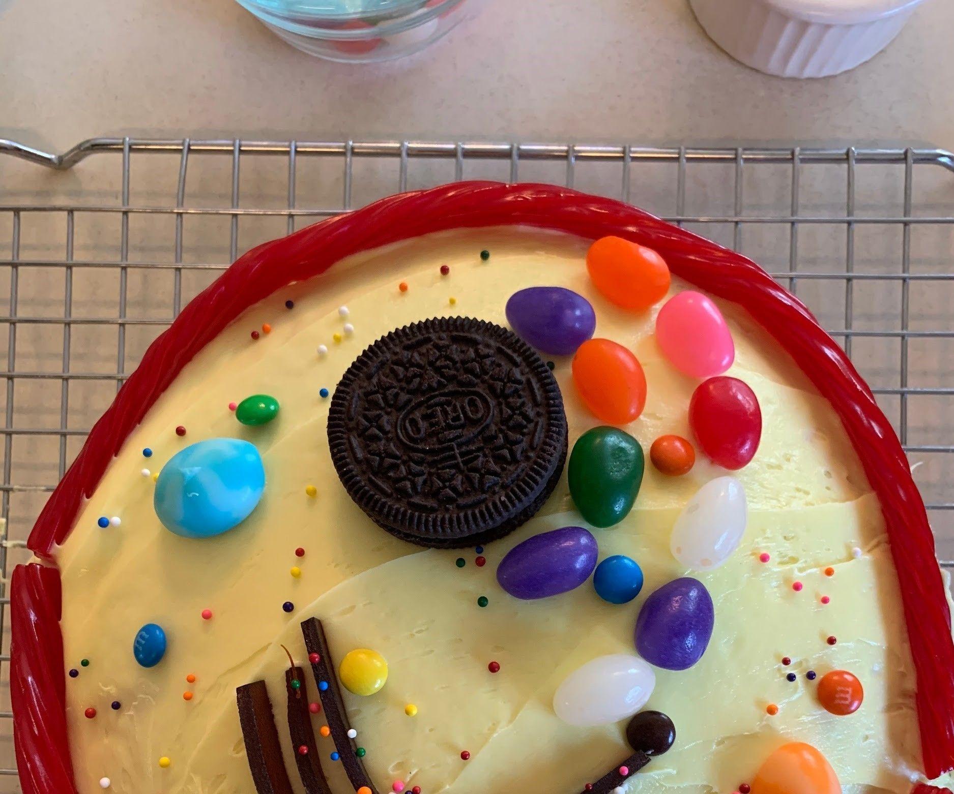 Edible Cell Cake