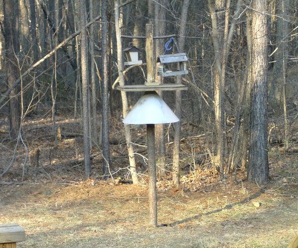 Bird Feeding Station With Squirrel Baffle