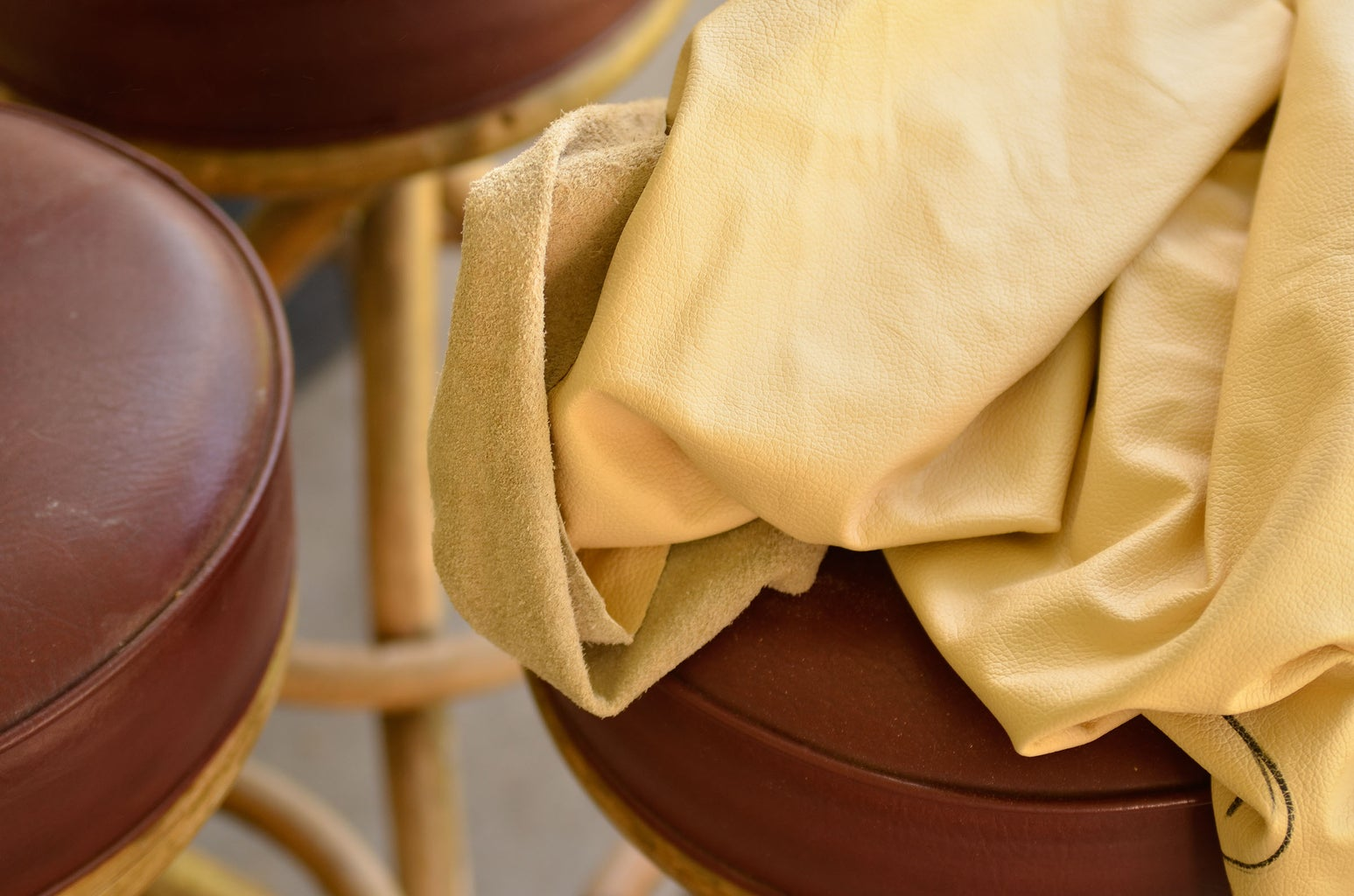 Obtain Glue, Leather, Cardboard