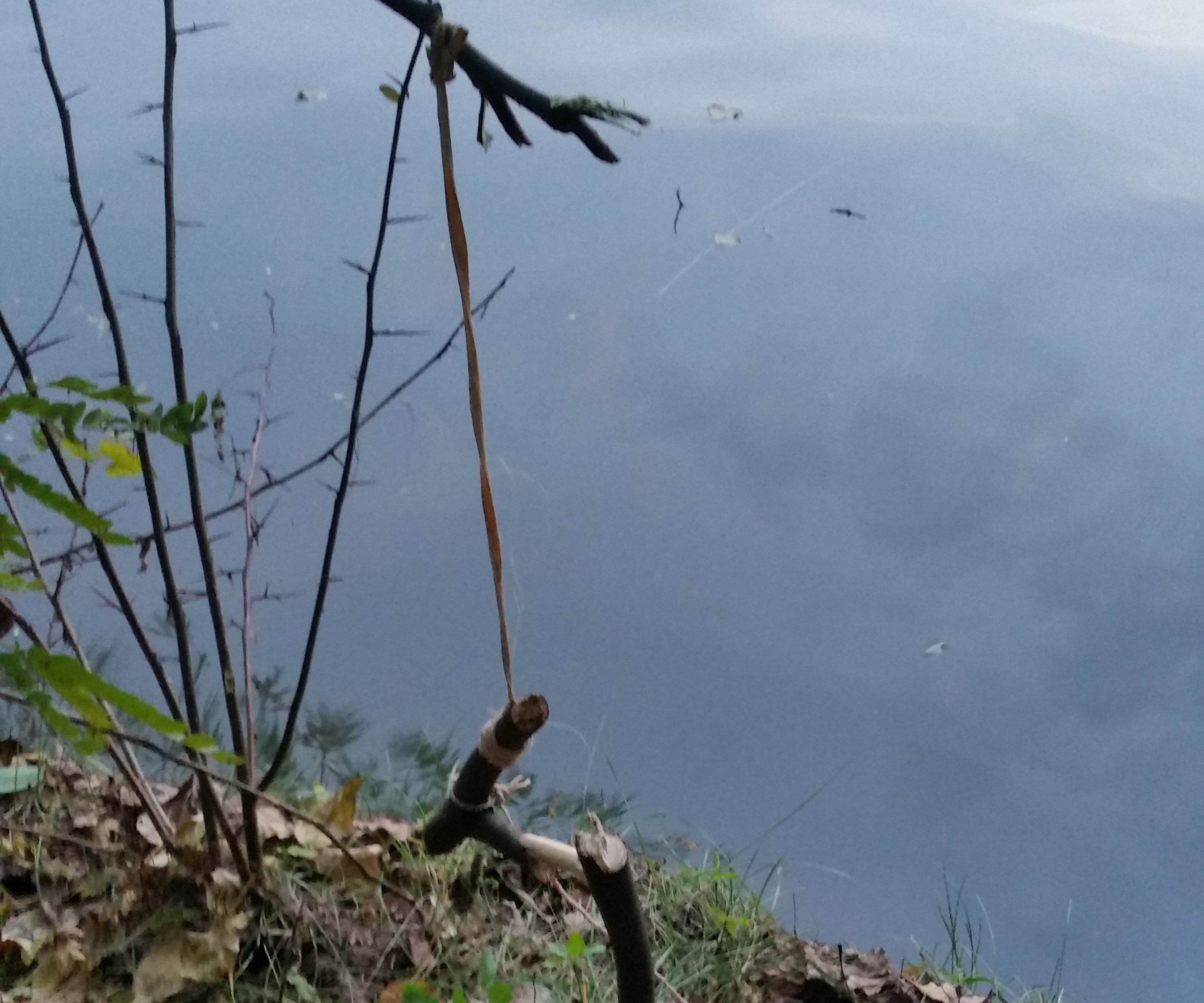Primitive Smart Fishing
