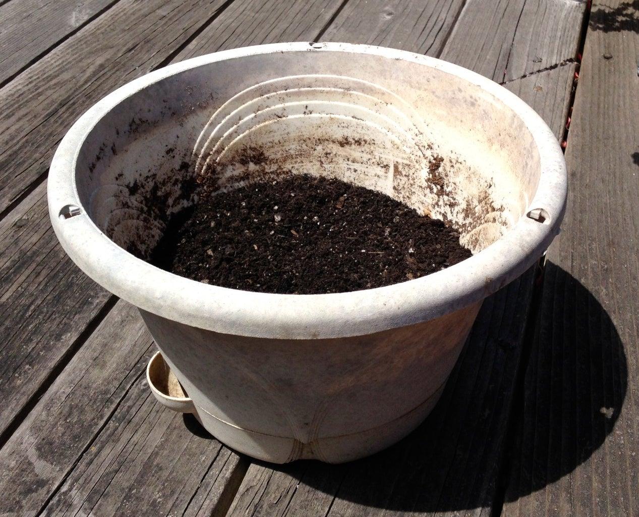 Step 1: Self-watering Pot