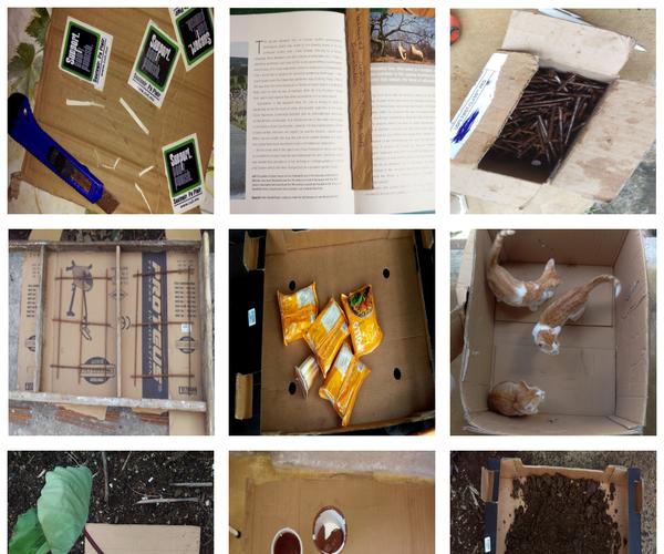 50 Ways to Use Cardboard