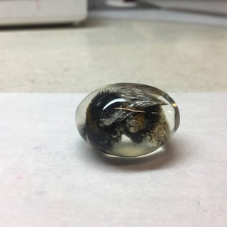 Mosquito in Amber Prop Replica