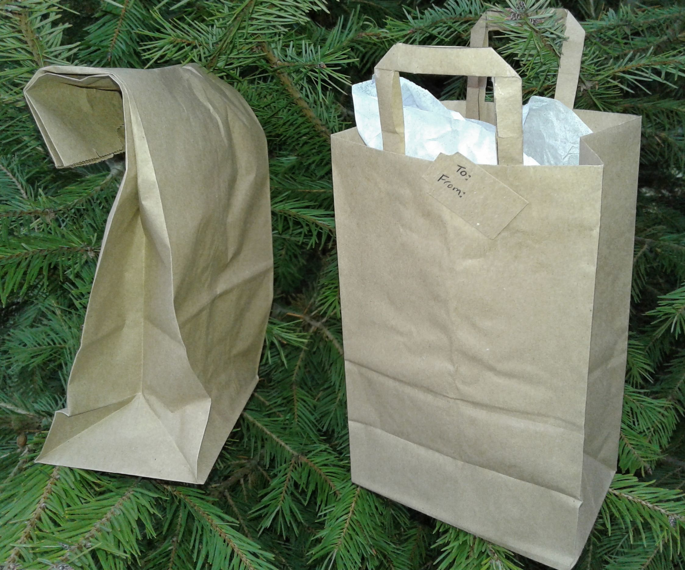 Turn a Lunch Sack Into a Gift Bag