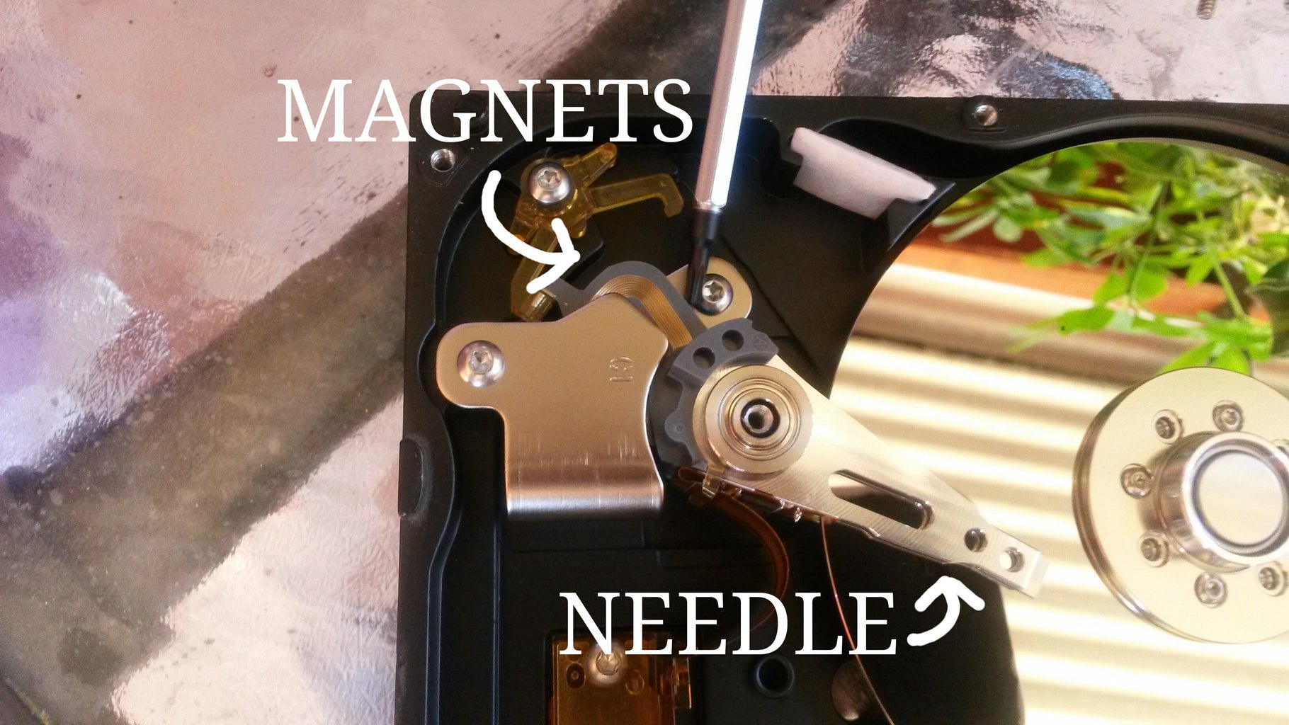 Find the Needle - Encontrar Las Agujas