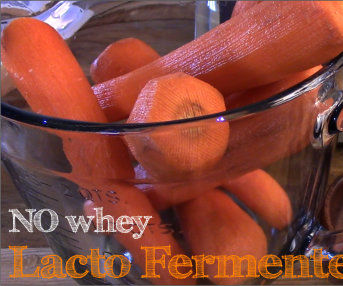 No WHEY Lacto Fermented Grated Carrots