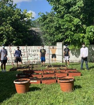How to Create a Garden