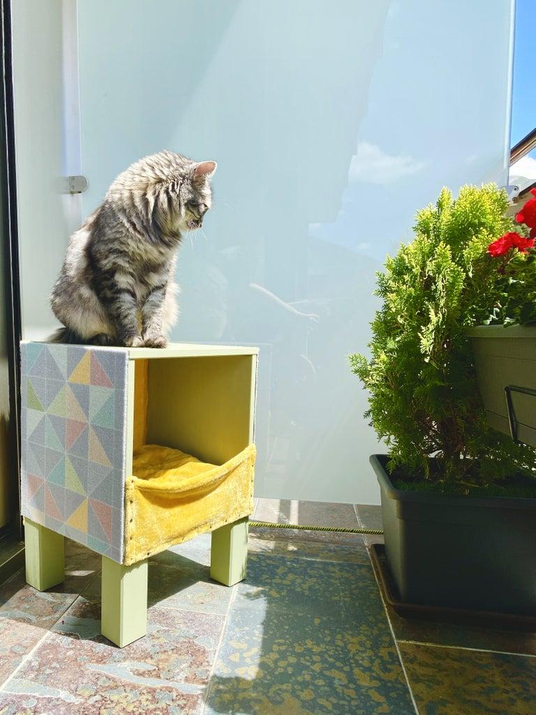 Tada! Cat House Is Ready!