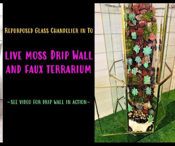 重新利用玻璃吊灯成活苔藓滴水墙和人造玻璃容器