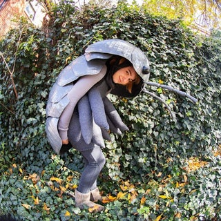 Amazing Roly Poly Costume