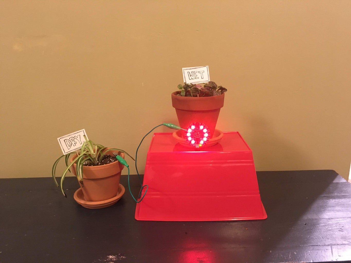 Attaching Your Soil Sensor to Your Pot and Constructing a Stand