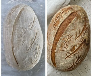 Sourdough Starter and Bread