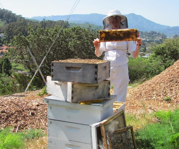 Nucleus Colony -or- How to Start a Beehive