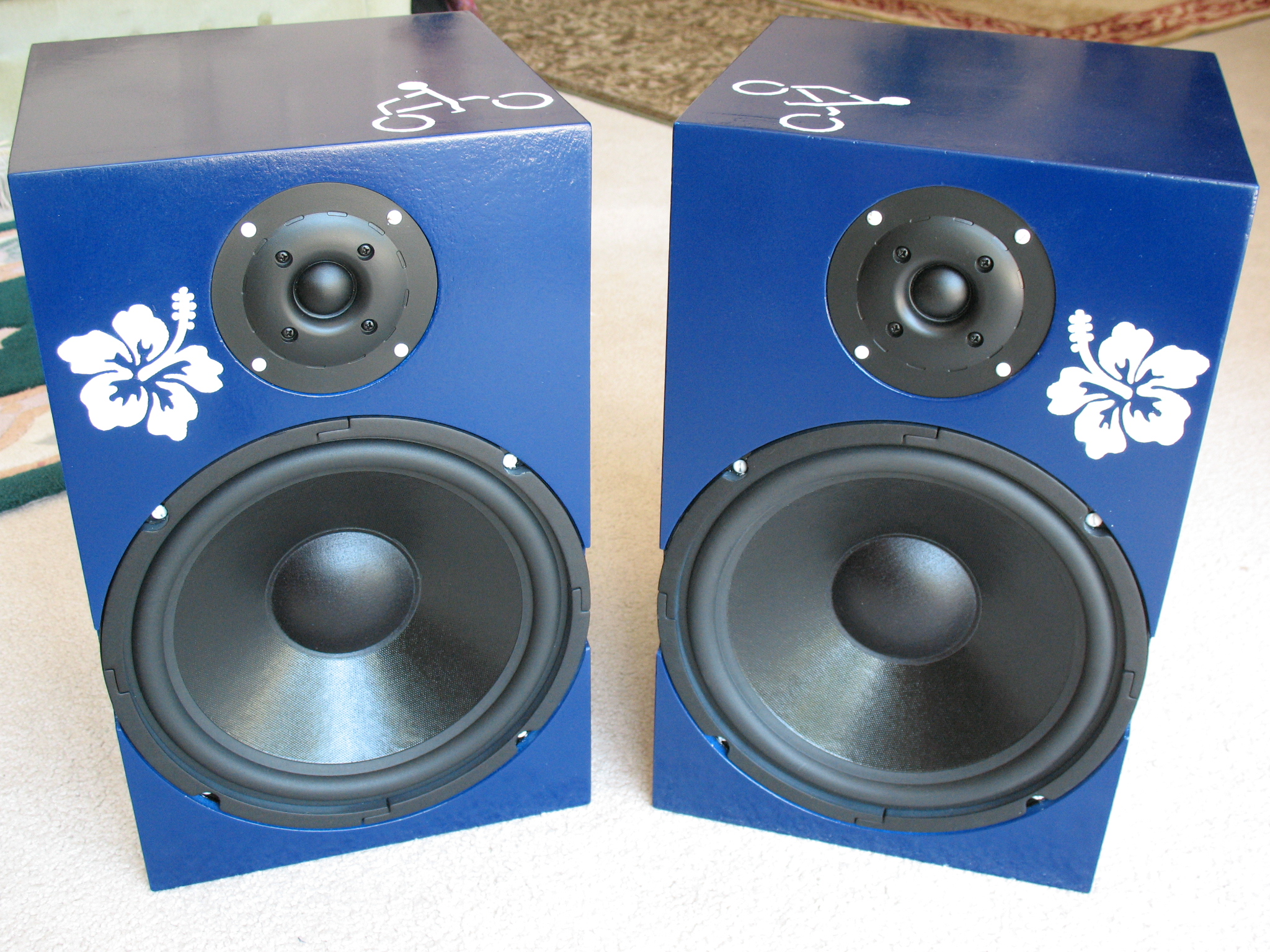 Build A Pair of Stereo Speakers